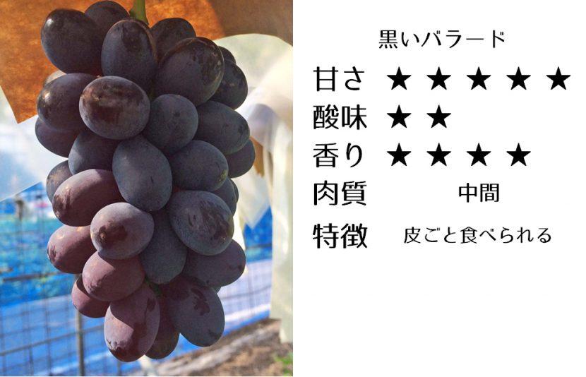 黒いバラード食味評価
