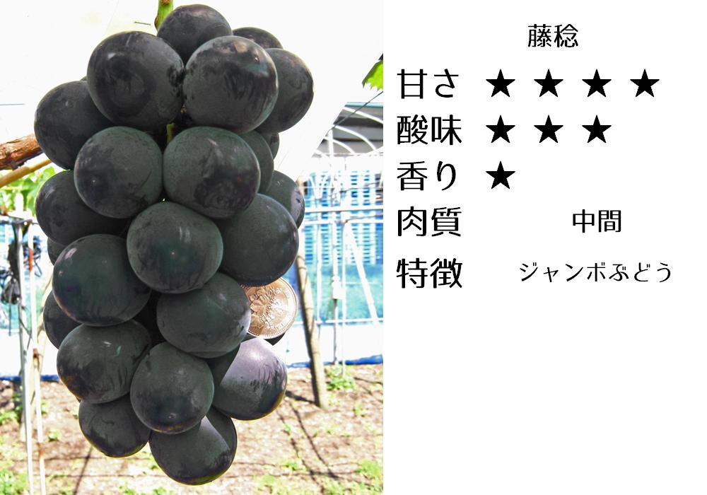 藤稔の食味評価