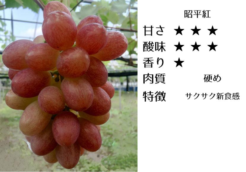 昭平紅の食味評価